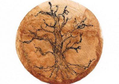 Teabag Tree